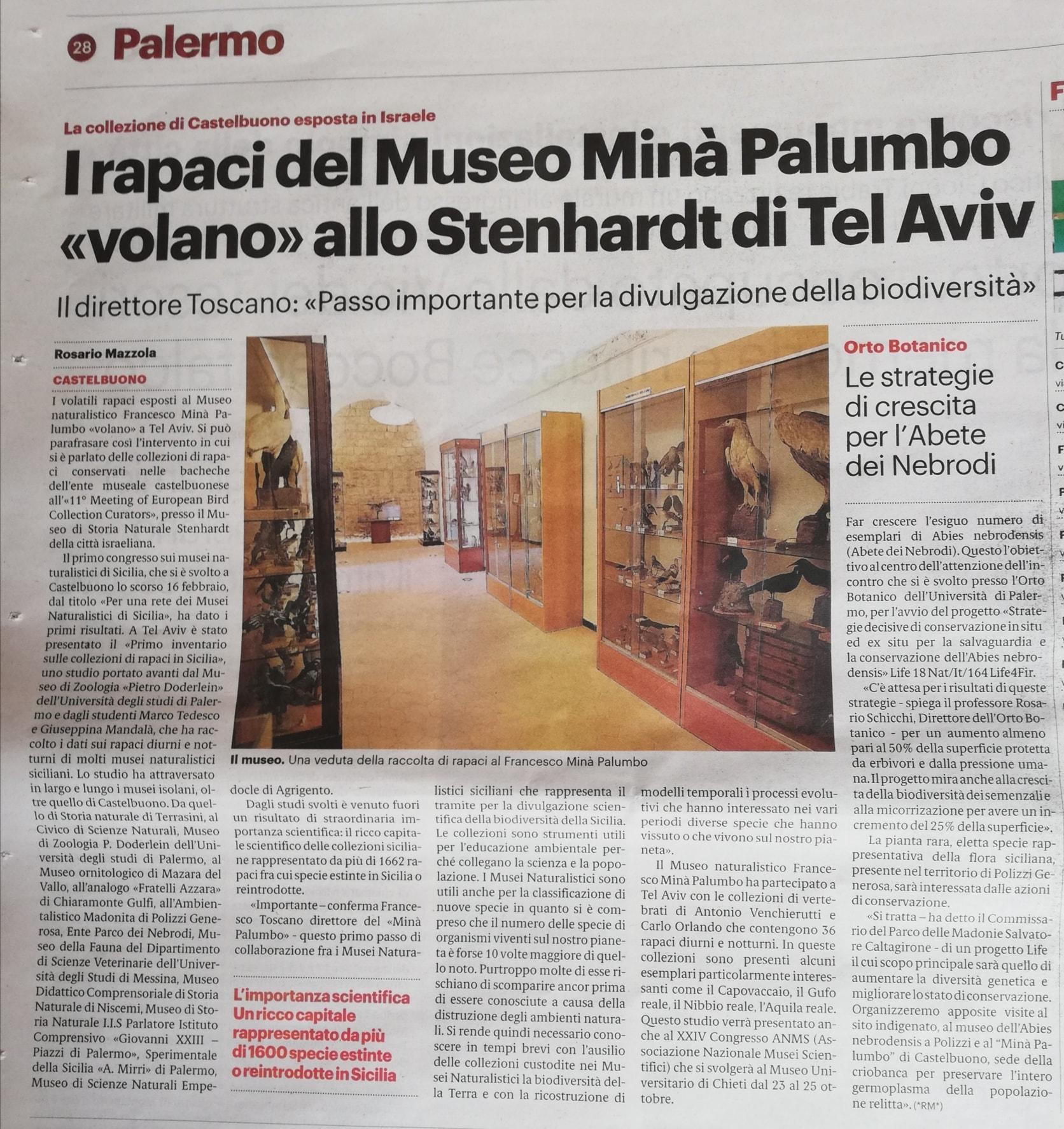 Studio sui rapaci di Sicilia presentato a Tel Aviv